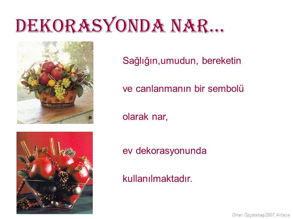 Sağlık Sektöründe Nar… Beslenme Takviyesi İlaçları; Cilt Bakım Ürünleri; Nar Suyu Nar Çayı Antioksidan Orhan Özçatalbaş/2007, Antalya