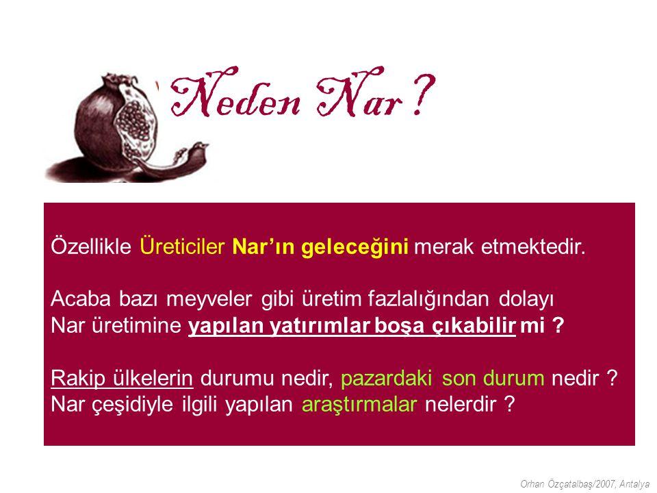 Nar'ın Geleceği Doç.Dr.Orhan Özçatalbaş 10 Mayıs 2007 Dedeman-Antalya Neden Nar