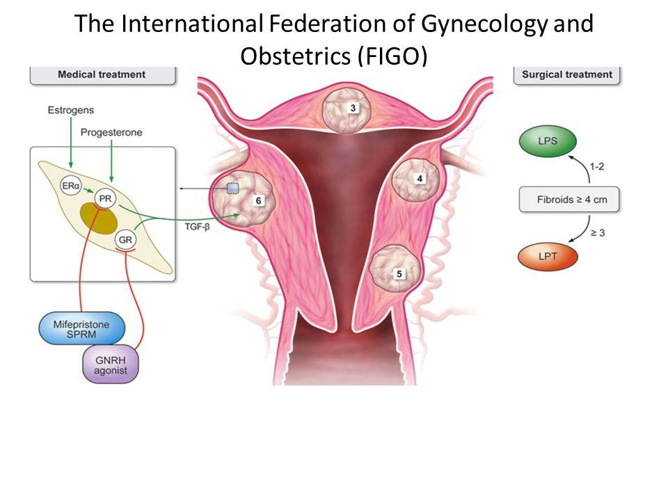 The International Federation of Gynecology and Obstetrics (FIGO)