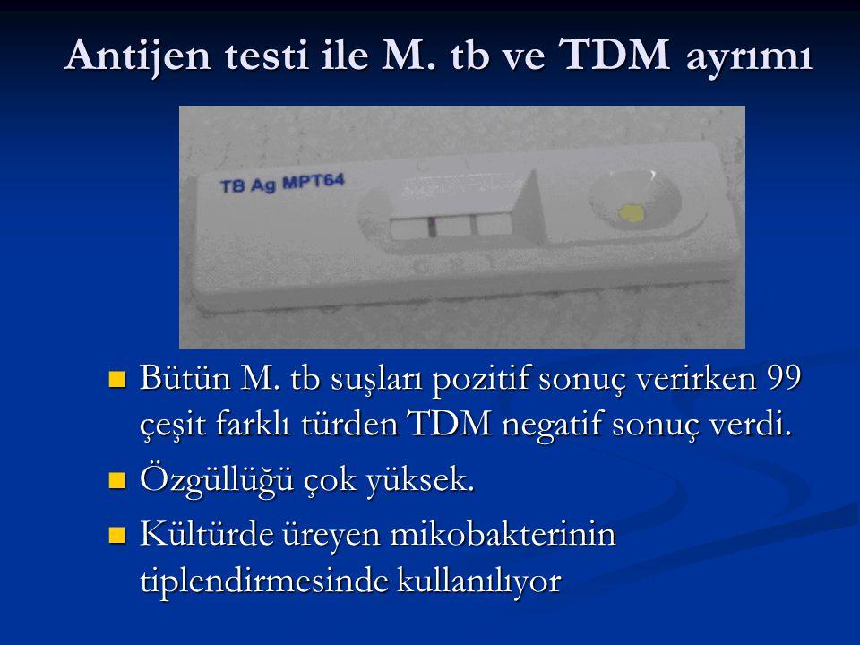 Antijen testi ile M.tb ve TDM ayrımı Bütün M.