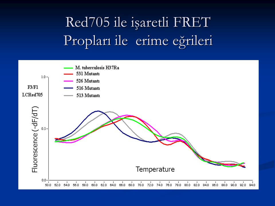 Fluorescence (-dF/dT) Temperature Red705 ile işaretli FRET Propları ile erime eğrileri