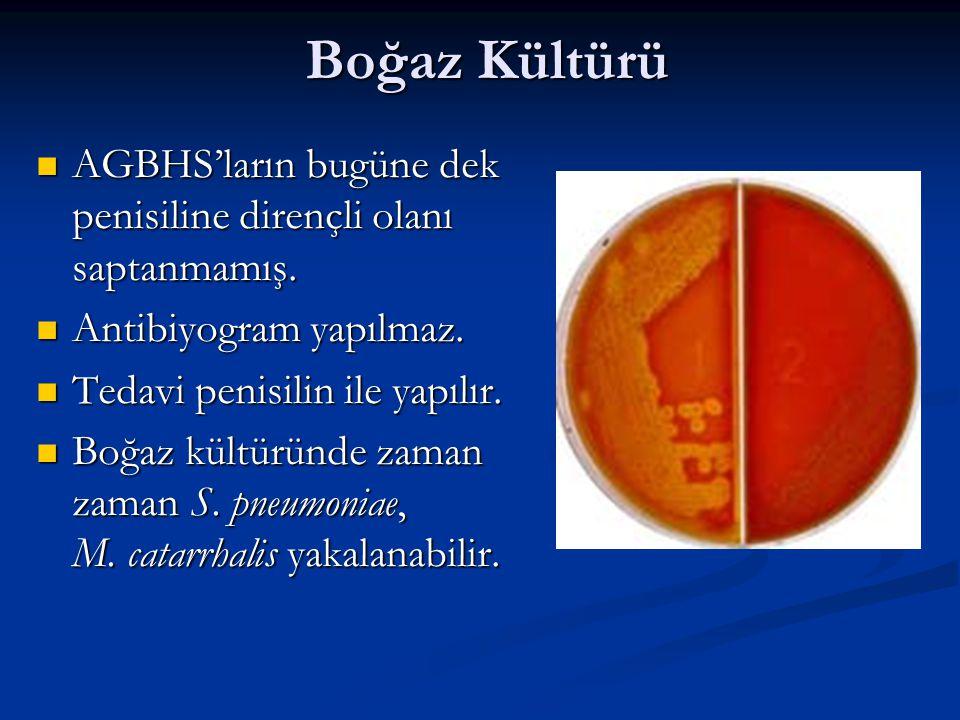 Boğaz Kültürü AGBHS'ların bugüne dek penisiline dirençli olanı saptanmamış.
