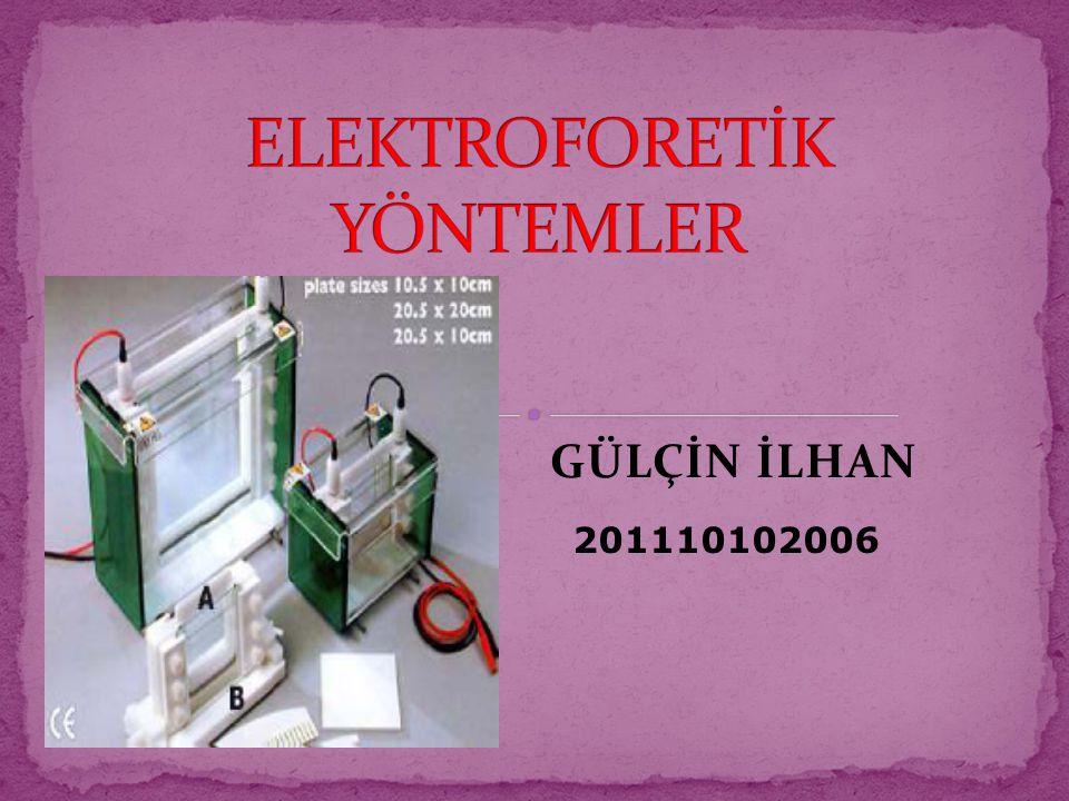 GÜLÇİN İLHAN 201110102006