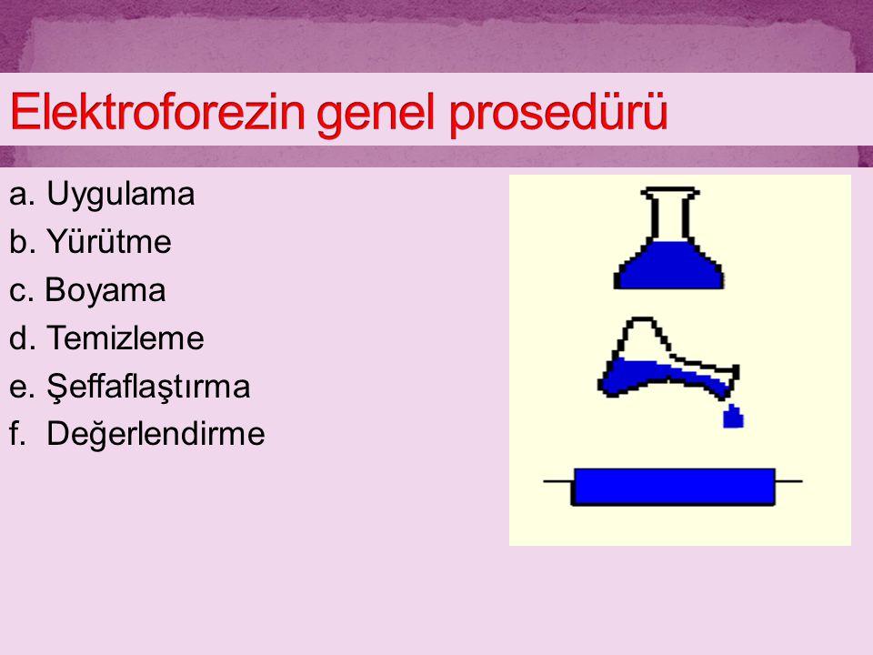 a. Uygulama b. Yürütme c. Boyama d. Temizleme e. Şeffaflaştırma f. Değerlendirme