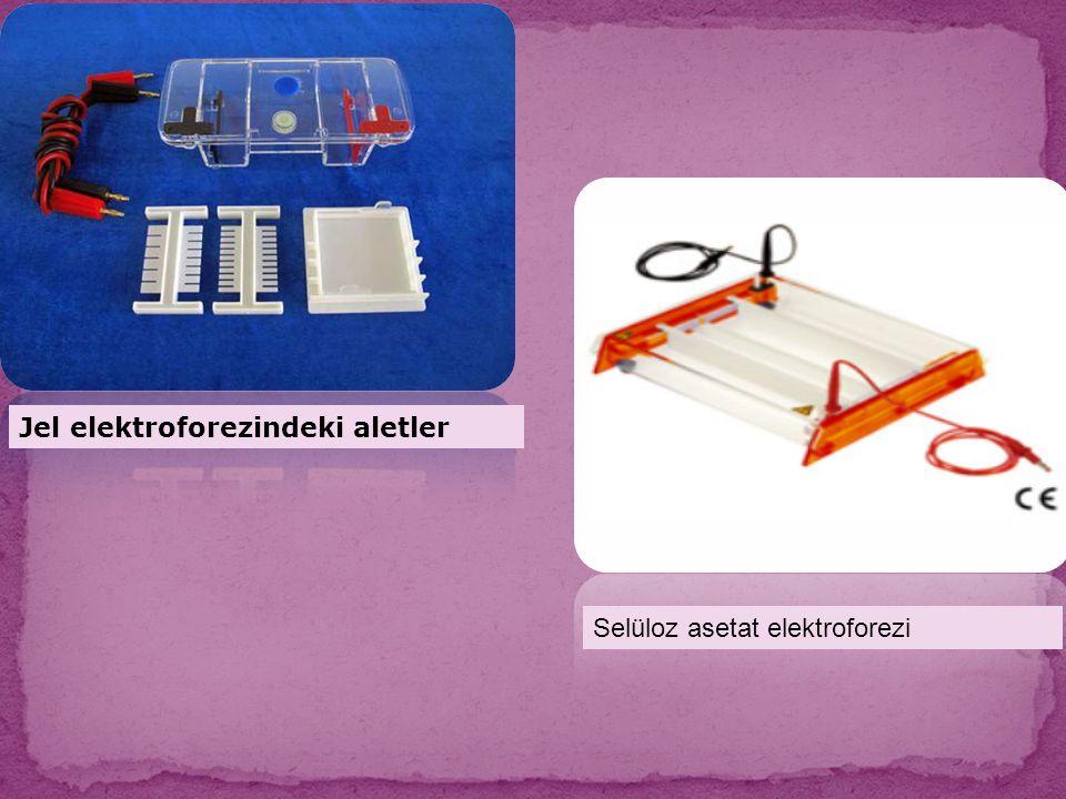 Selüloz asetat elektroforezi Jel elektroforezindeki aletler