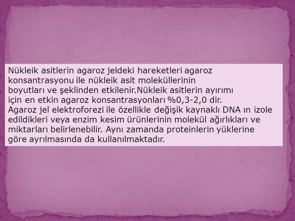 Nükleik asitlerin agaroz jeldeki hareketleri agaroz konsantrasyonu ile nükleik asit moleküllerinin boyutları ve şeklinden etkilenir.Nükleik asitlerin
