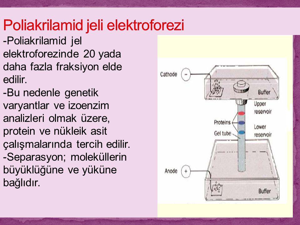 -Poliakrilamid jel elektroforezinde 20 yada daha fazla fraksiyon elde edilir. -Bu nedenle genetik varyantlar ve izoenzim analizleri olmak üzere, prote