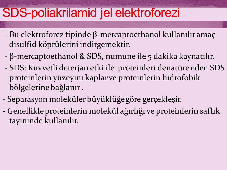 - Bu elektroforez tipinde β-mercaptoethanol kullanılır amaç disulfid köprülerini indirgemektir. - β-mercaptoethanol & SDS, numune ile 5 dakika kaynatı