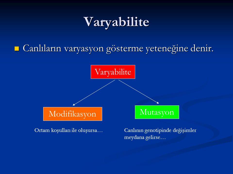 Varyabilite Canlıların varyasyon gösterme yeteneğine denir. Canlıların varyasyon gösterme yeteneğine denir. Varyabilite Modifikasyon Mutasyon Ortam ko