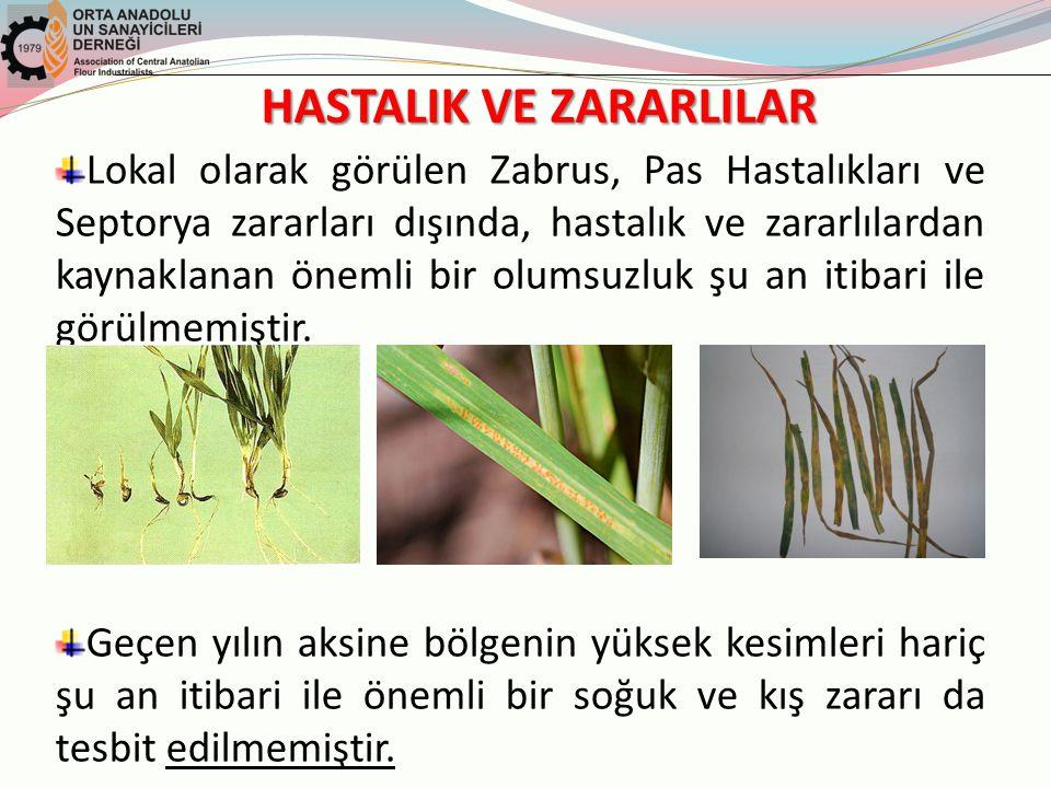 HASTALIK VE ZARARLILAR Lokal olarak görülen Zabrus, Pas Hastalıkları ve Septorya zararları dışında, hastalık ve zararlılardan kaynaklanan önemli bir olumsuzluk şu an itibari ile görülmemiştir.
