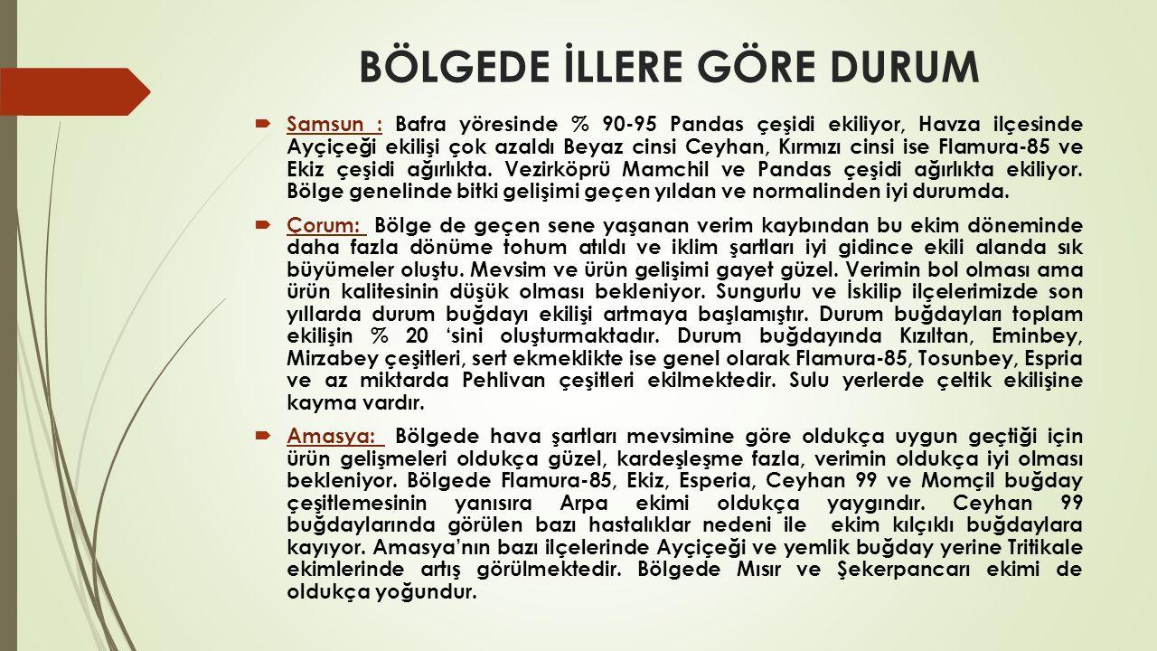  Yozgat-Yerköy: Buğday ekim cinsinin de neredeyse tamamı pehlivan çeşitlemesidir.