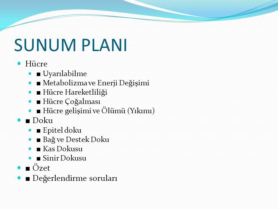 SUNUM PLANI Hücre ■ Uyarılabilme ■ Metabolizma ve Enerji Değişimi ■ Hücre Hareketliliği ■ Hücre Çoğalması ■ Hücre gelişimi ve Ölümü (Yıkımı) ■ Doku ■