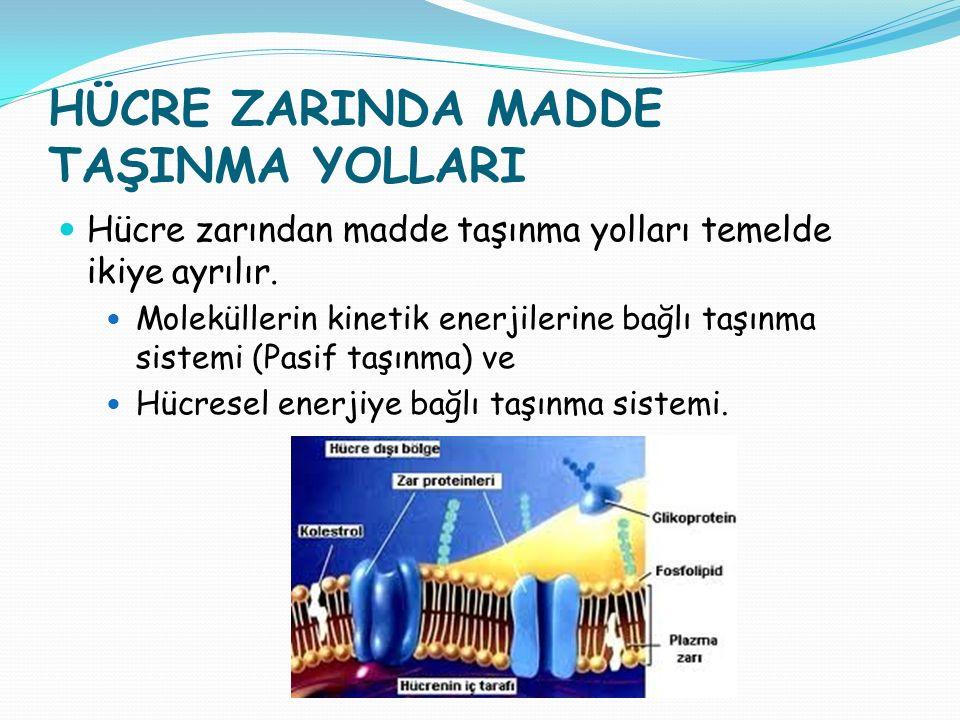 HÜCRE ZARINDA MADDE TAŞINMA YOLLARI Hücre zarından madde taşınma yolları temelde ikiye ayrılır. Moleküllerin kinetik enerjilerine bağlı taşınma sistem