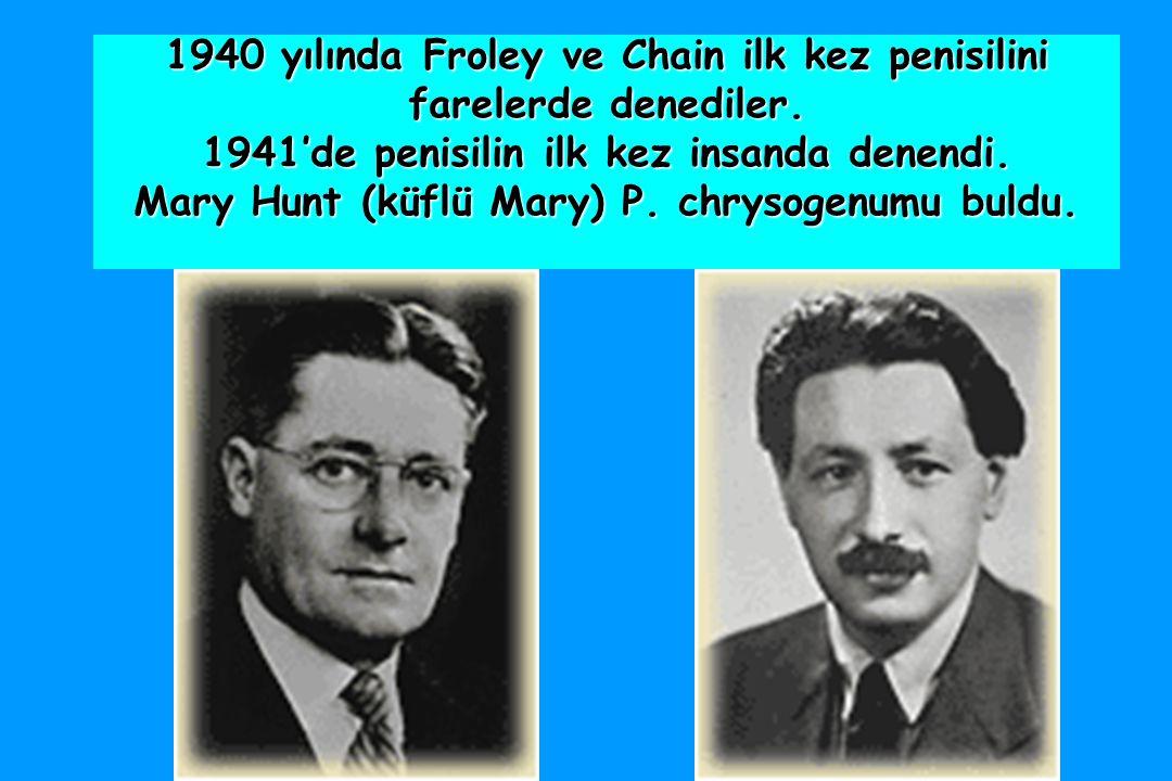 1940 yılında Froley ve Chain ilk kez penisilini farelerde denediler.