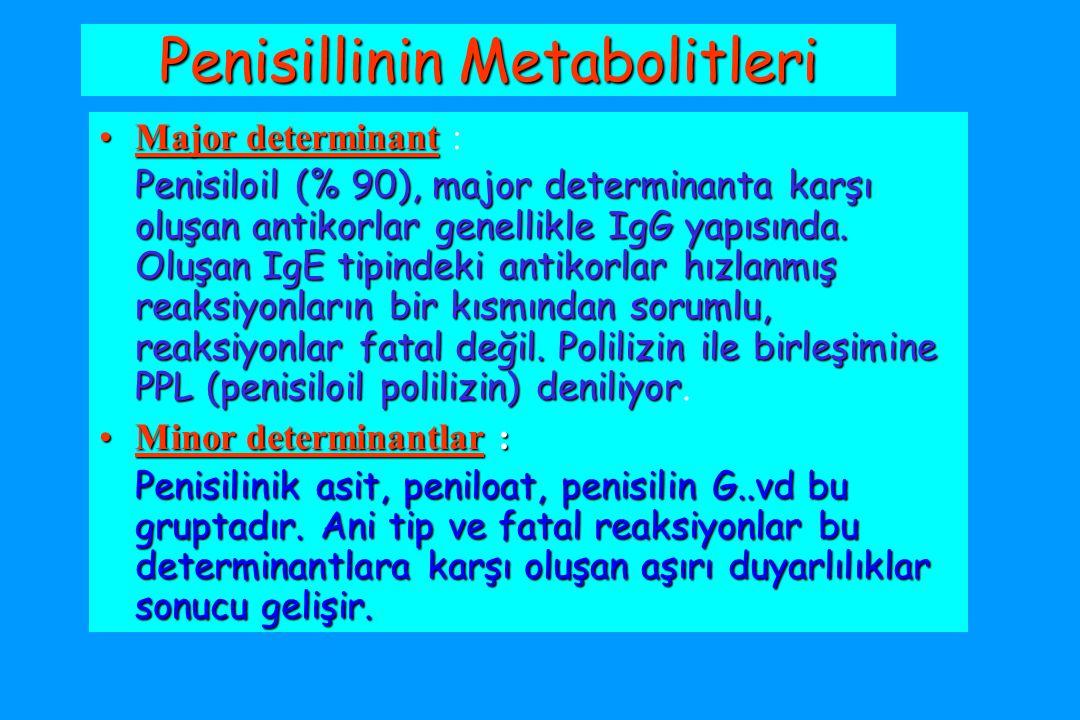 Penisillinin Metabolitleri Major determinantMajor determinant : Penisiloil (% 90), major determinanta karşı oluşan antikorlar genellikle IgG yapısında.