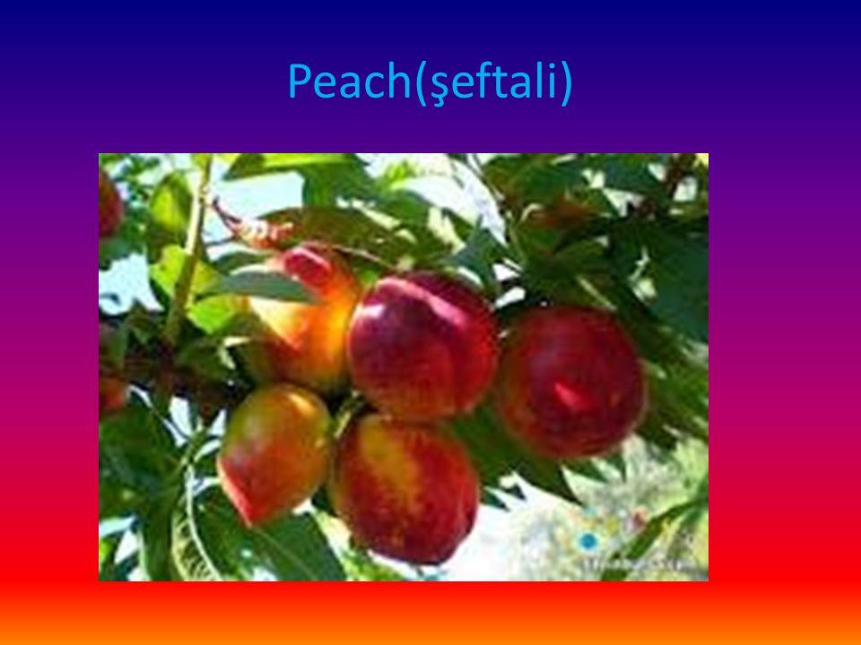 Peach(şeftali)