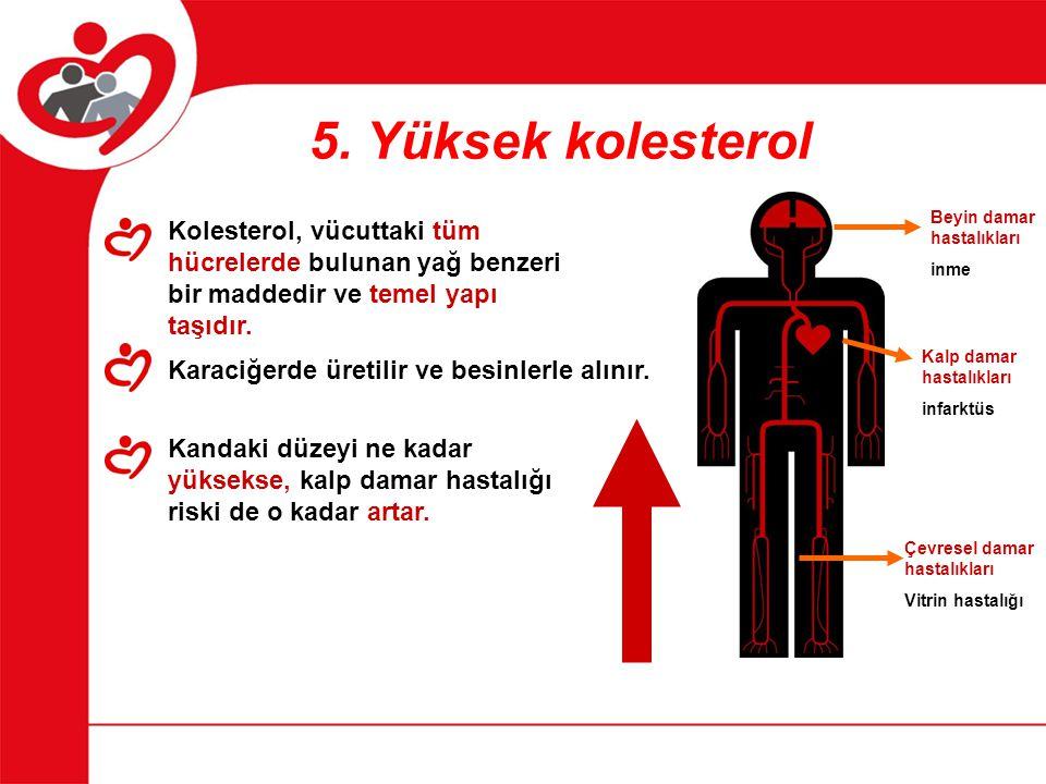 5. Yüksek kolesterol Kolesterol, vücuttaki tüm hücrelerde bulunan yağ benzeri bir maddedir ve temel yapı taşıdır. Karaciğerde üretilir ve besinlerle a