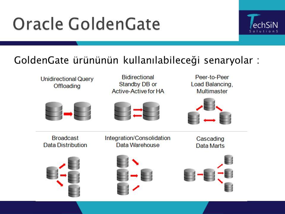 GoldenGate ürününün kullanılabileceği senaryolar :