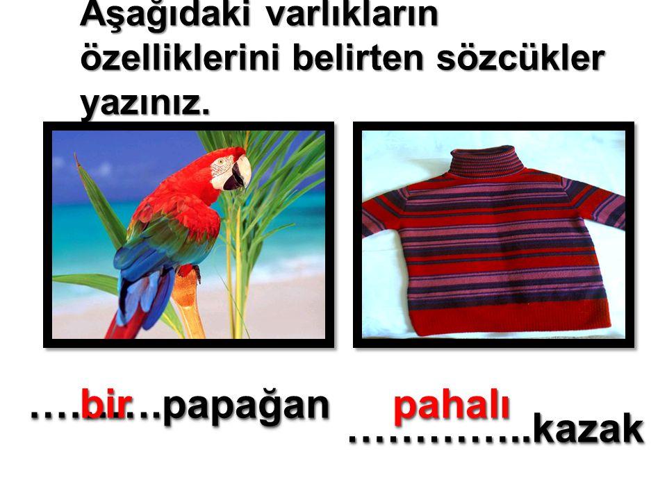 Aşağıdaki varlıkların özelliklerini belirten sözcükler yazınız. ……….papağan……….papağan …………..kazak …………..kazak birbirpahalıpahalı