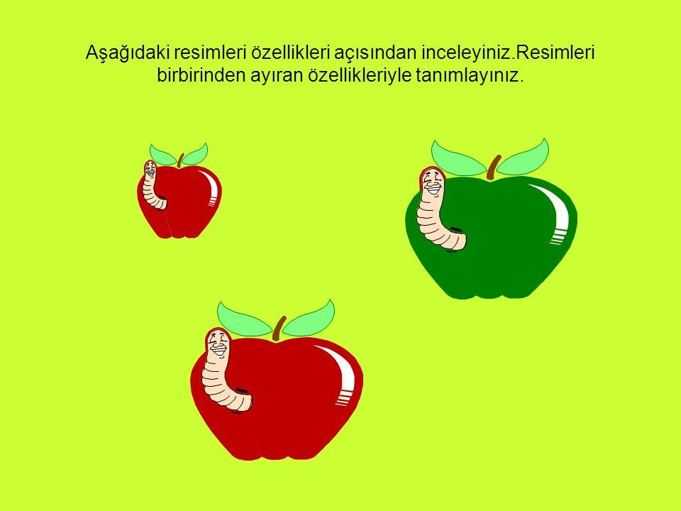 Hangi ev?: Nasıl Bebek?: Kaç Kalem?: Kaçıncı Sıra?: Ne kadar elma?: Kaçar Lira?: Yukarıdaki sorulara uygun cevapları veriniz.