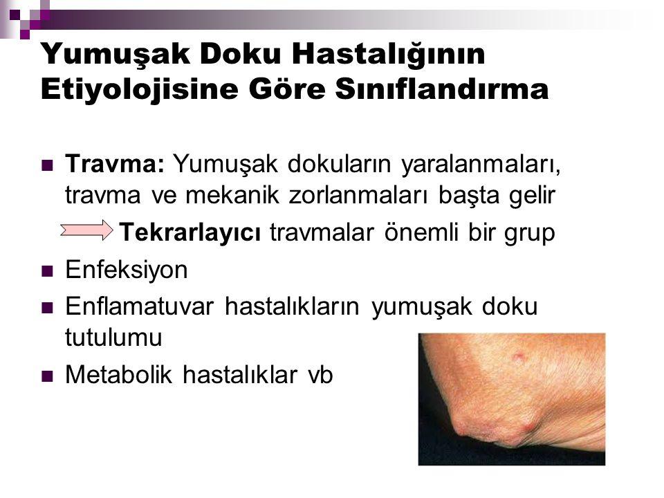 Lokalizasyonuna Göre Sınıflandırma Omurga Kas ağrıları: Fibromiyalji ve Miyofasiyal ağrı sendromu Üst Ekstremite Omuz: Tendinit, kapsülit, bursit vb.