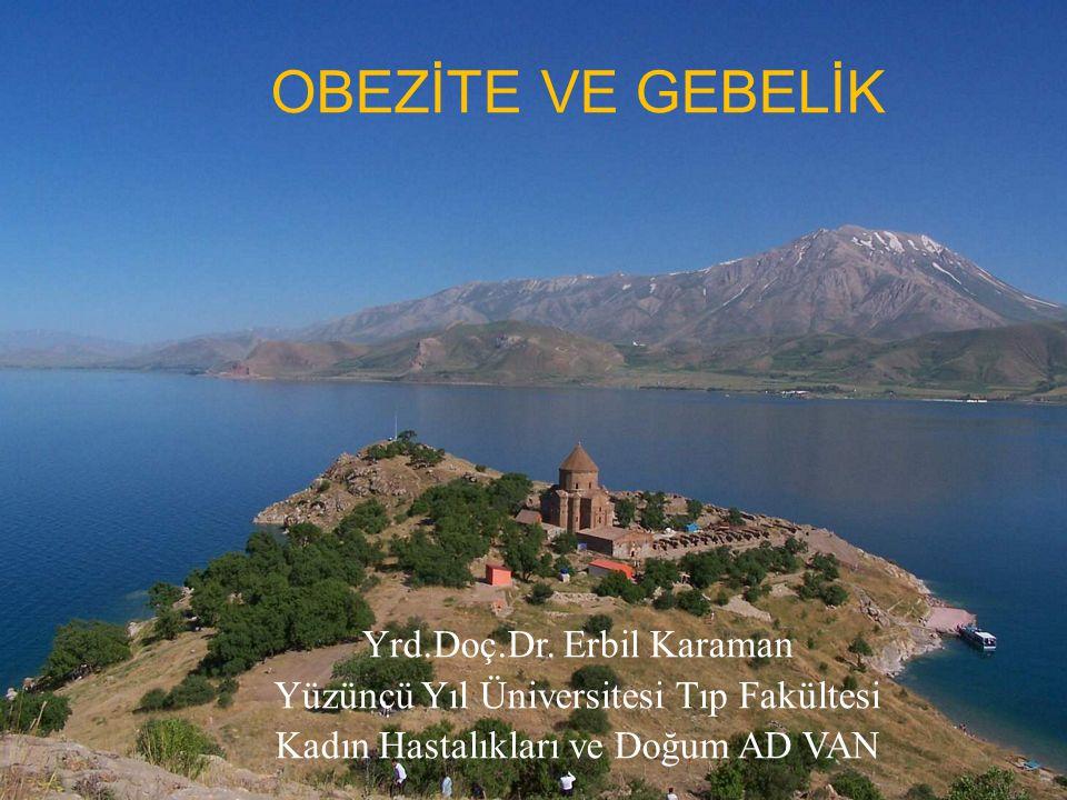 OBEZİTE VE GEBELİK Yrd.Doç.Dr. Erbil Karaman Yüzüncü Yıl Üniversitesi Tıp Fakültesi Kadın Hastalıkları ve Doğum AD VAN