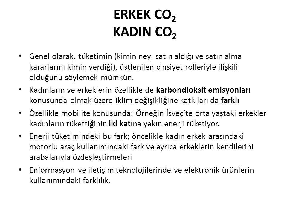 ERKEK CO 2 KADIN CO 2 Genel olarak, tüketimin (kimin neyi satın aldığı ve satın alma kararlarını kimin verdiği), üstlenilen cinsiyet rolleriyle ilişki