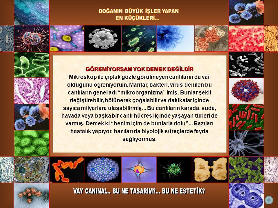 GÖREMİYORSAM YOK DEMEK DEĞİLDİR Mikroskop ile çıplak gözle görülmeyen canlıların da var olduğunu öğreniyorum. Mantar, bakteri, virüs denilen bu canlıl