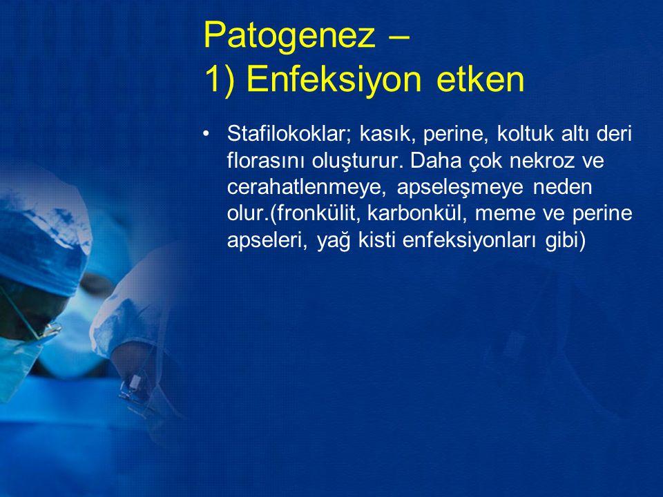 Patogenez – 1) Enfeksiyon etken Stafilokoklar; kasık, perine, koltuk altı deri florasını oluşturur. Daha çok nekroz ve cerahatlenmeye, apseleşmeye ned