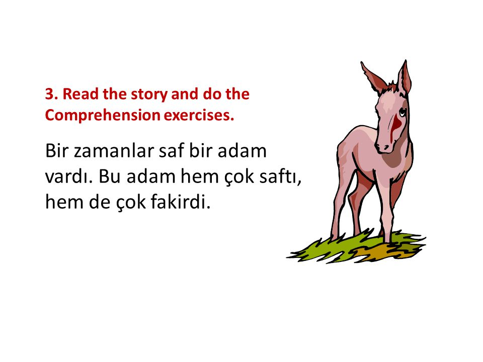 3. Read the story and do the Comprehension exercises. Bir zamanlar saf bir adam vardı. Bu adam hem çok saftı, hem de çok fakirdi.