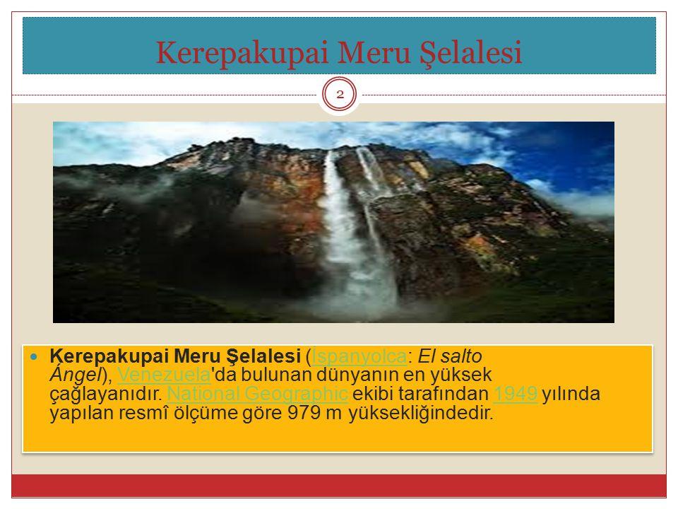 Kerepakupai Meru Şelalesi (İspanyolca: El salto Ángel), Venezuela'da bulunan dünyanın en yüksek çağlayanıdır. National Geographic ekibi tarafından 194
