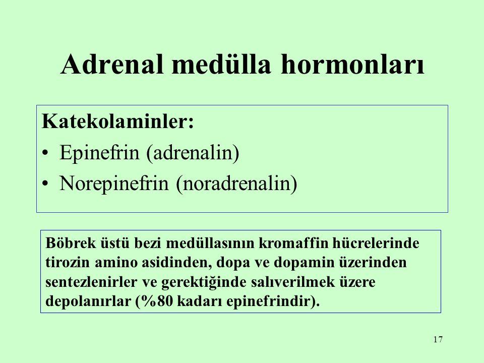 17 Adrenal medülla hormonları Katekolaminler: Epinefrin (adrenalin) Norepinefrin (noradrenalin) Böbrek üstü bezi medüllasının kromaffin hücrelerinde t