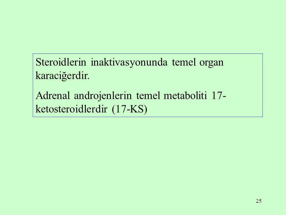 25 Steroidlerin inaktivasyonunda temel organ karaciğerdir. Adrenal androjenlerin temel metaboliti 17- ketosteroidlerdir (17-KS)