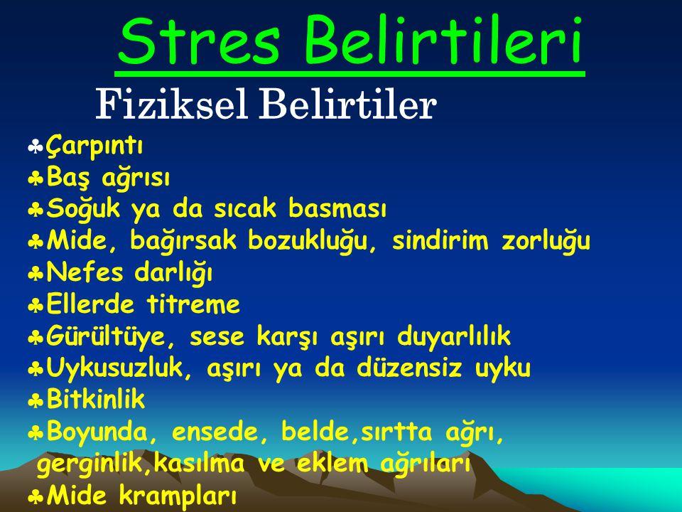 Neler Strese Sebep Olur? Çeşitli yaşamsal değişiklikler bazı kişilerde strese sebep olabilir. Bunlar çevresel (fiziksel çevre değişikliği,gürültü), so