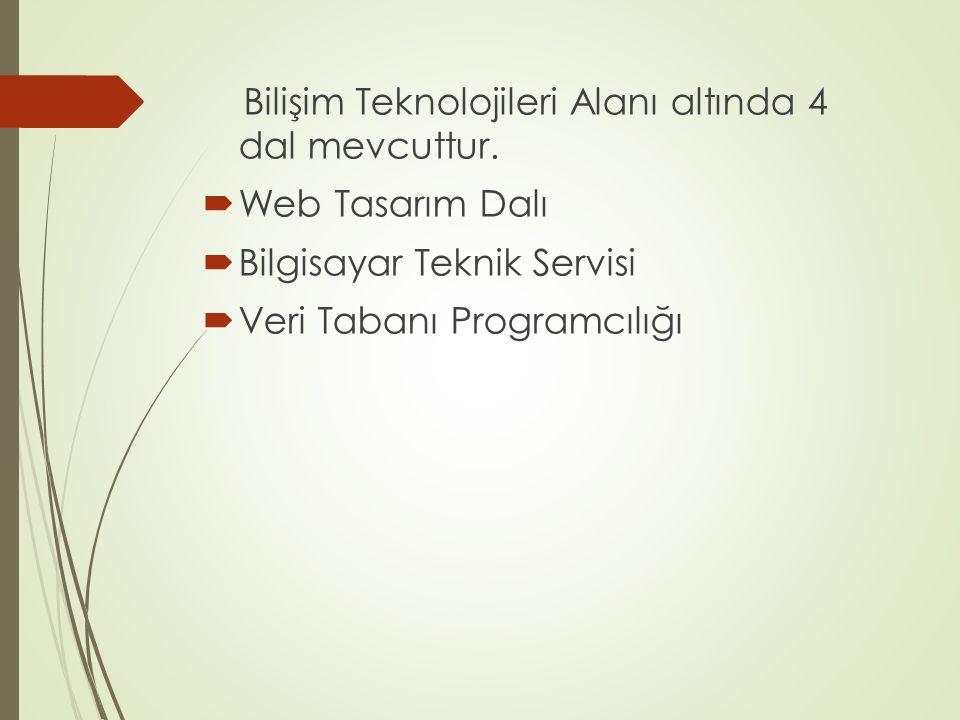 Bilişim Teknolojileri Alanı altında 4 dal mevcuttur.  Web Tasarım Dalı  Bilgisayar Teknik Servisi  Veri Tabanı Programcılığı