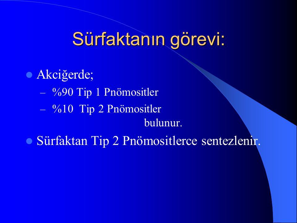 Sürfaktanın görevi: Akciğerde; – %90 Tip 1 Pnömositler – %10 Tip 2 Pnömositler bulunur. Sürfaktan Tip 2 Pnömositlerce sentezlenir.