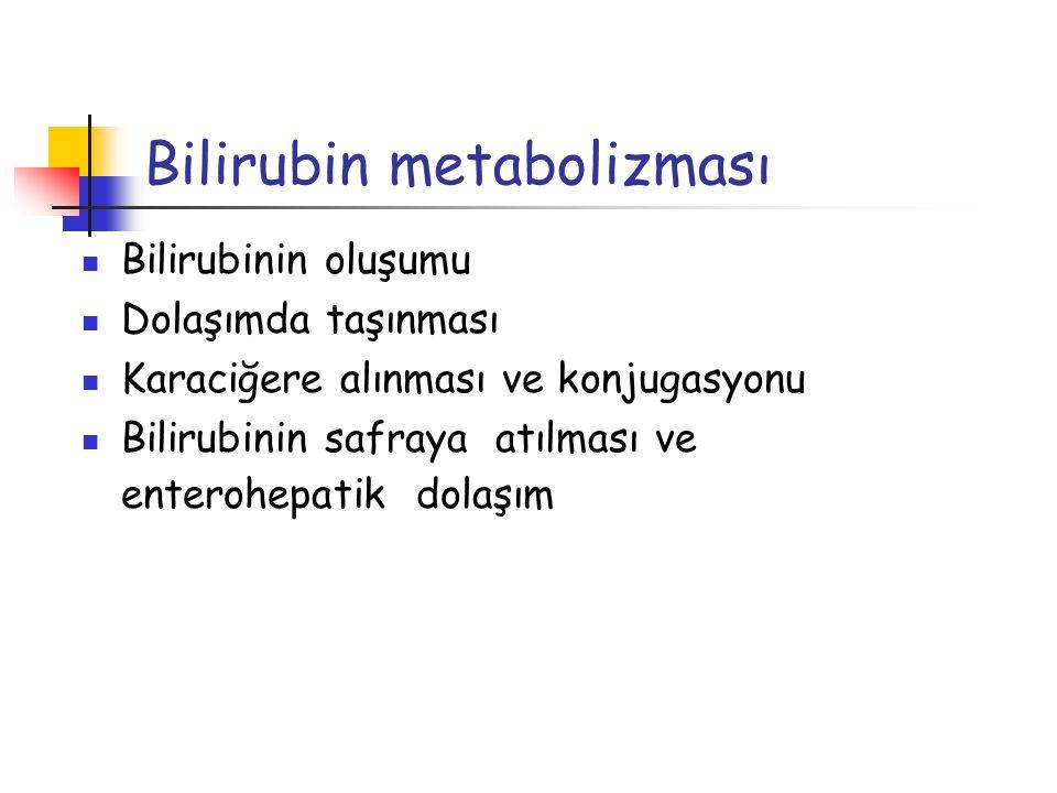 Bilirubin metabolizması Bilirubinin oluşumu Dolaşımda taşınması Karaciğere alınması ve konjugasyonu Bilirubinin safraya atılması ve enterohepatik dola