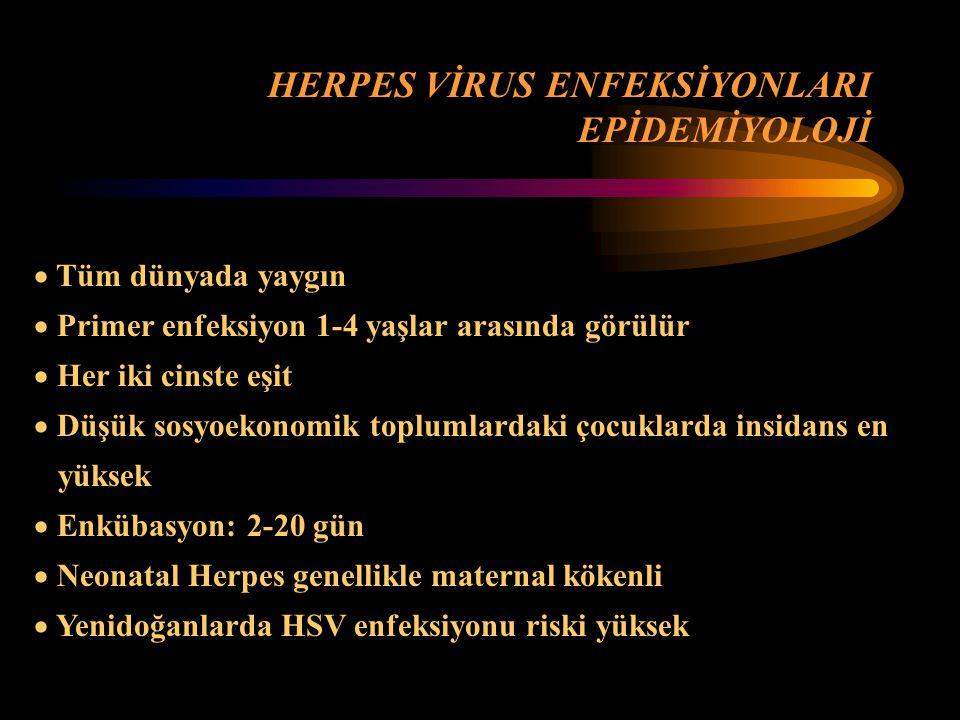  Tüm dünyada yaygın  Primer enfeksiyon 1-4 yaşlar arasında görülür  Her iki cinste eşit  Düşük sosyoekonomik toplumlardaki çocuklarda insidans en yüksek  Enkübasyon: 2-20 gün  Neonatal Herpes genellikle maternal kökenli  Yenidoğanlarda HSV enfeksiyonu riski yüksek HERPES VİRUS ENFEKSİYONLARI EPİDEMİYOLOJİ