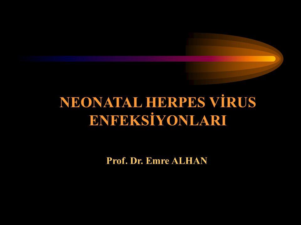 Prof. Dr. Emre ALHAN NEONATAL HERPES VİRUS ENFEKSİYONLARI