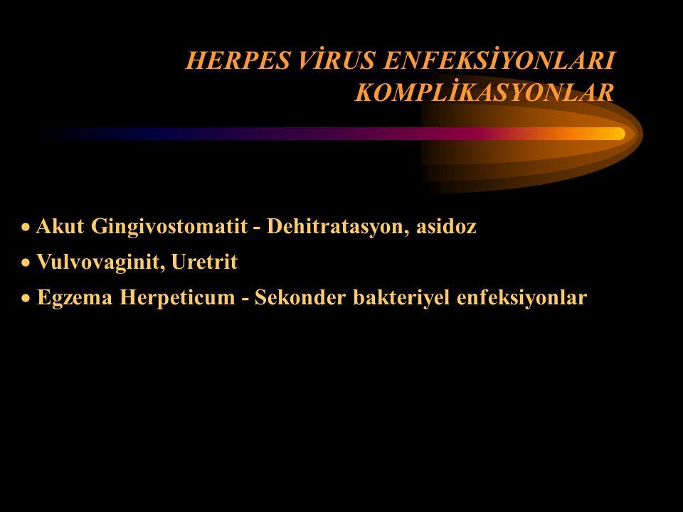  Akut Gingivostomatit - İYİ  Neonatal Herpes, Egzema Herpeticum, H.