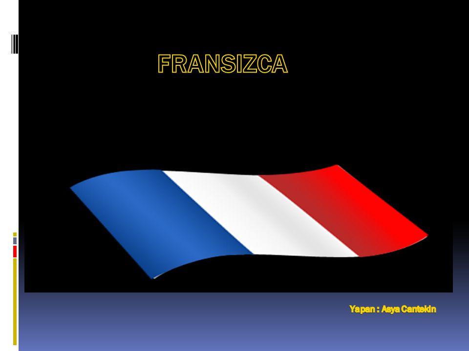 Hangi Ülkeler Fransızca Konuşur.