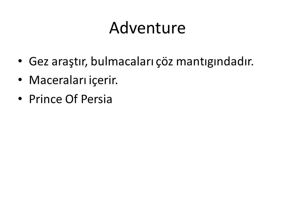 Adventure Gez araştır, bulmacaları çöz mantıgındadır. Maceraları içerir. Prince Of Persia
