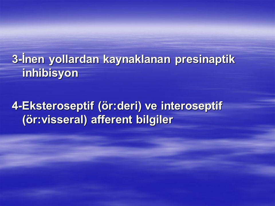 3-İnen yollardan kaynaklanan presinaptik inhibisyon 4-Eksteroseptif (ör:deri) ve interoseptif (ör:visseral) afferent bilgiler