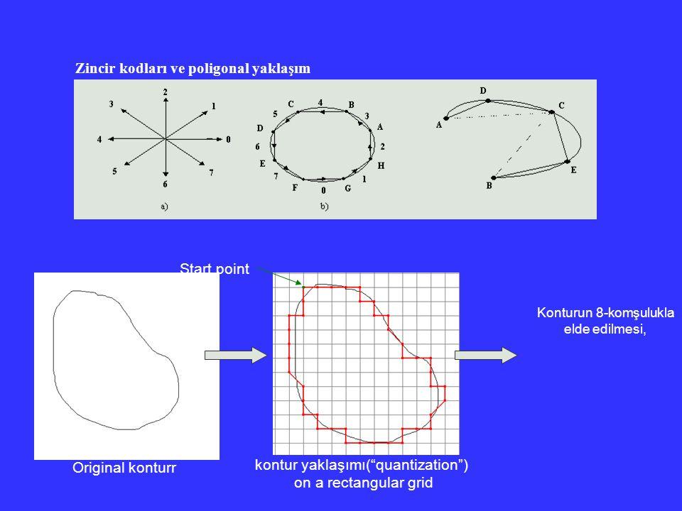 """Zincir kodları ve poligonal yaklaşım Original konturr kontur yaklaşımı(""""quantization"""") on a rectangular grid Konturun 8-komşulukla elde edilmesi, Star"""