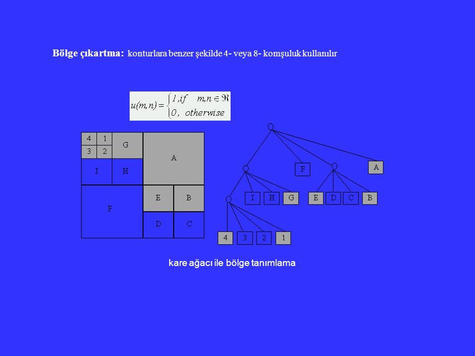 Bölge çıkartma: konturlara benzer şekilde 4- veya 8- komşuluk kullanılır kare ağacı ile bölge tanımlama