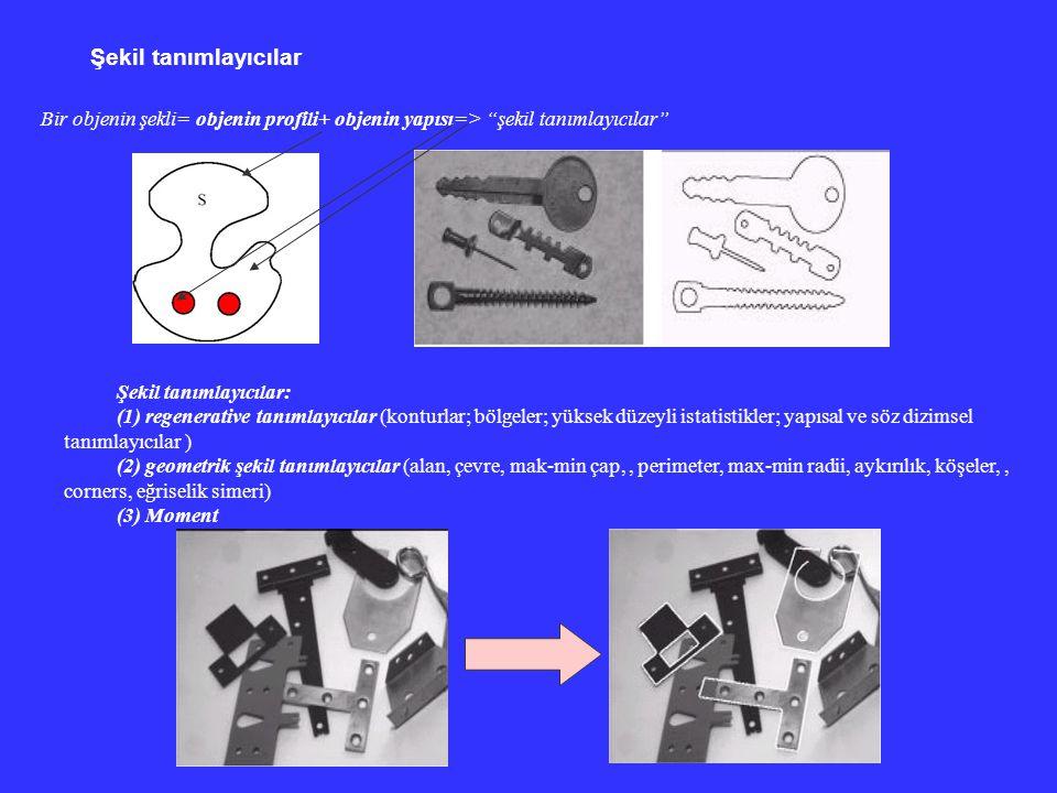 """Şekil tanımlayıcılar Bir objenin şekli= objenin profili+ objenin yapısı=> """"şekil tanımlayıcılar"""" Şekil tanımlayıcılar: (1) regenerative tanımlayıcılar"""