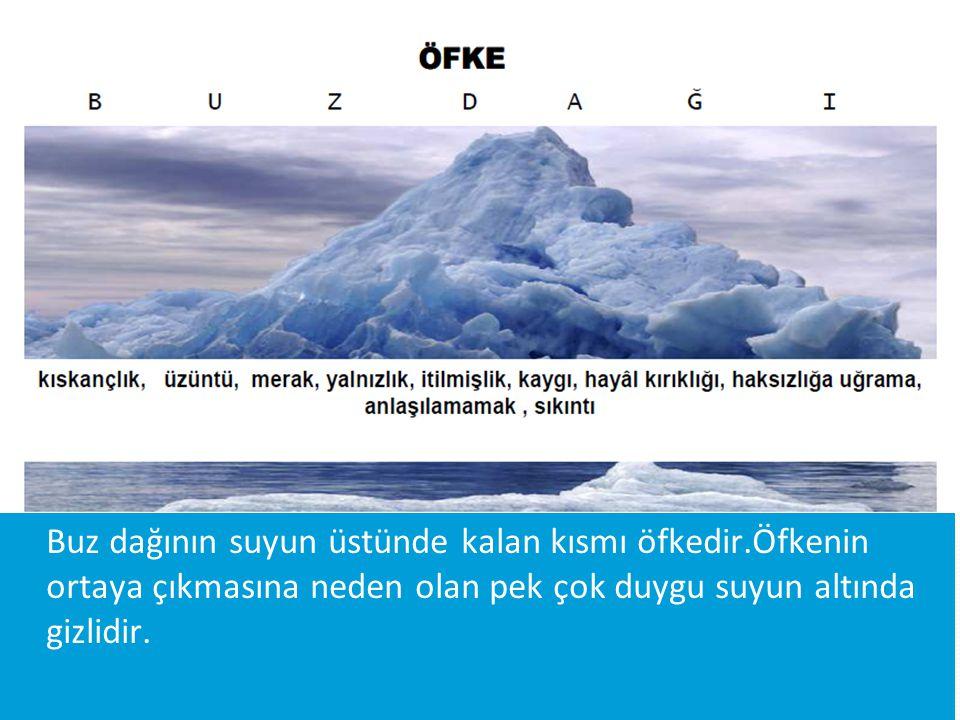 ÖMER MURAT PAMUK6 Buz dağının suyun üstünde kalan kısmı öfkedir.Öfkenin ortaya çıkmasına neden olan pek çok duygu suyun altında gizlidir.