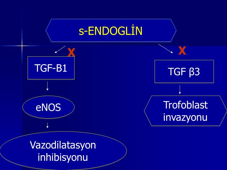 TGF β3 eNOS Vazodilatasyon inhibisyonu Trofoblast invazyonu s-ENDOGLİN TGF-B1 X X