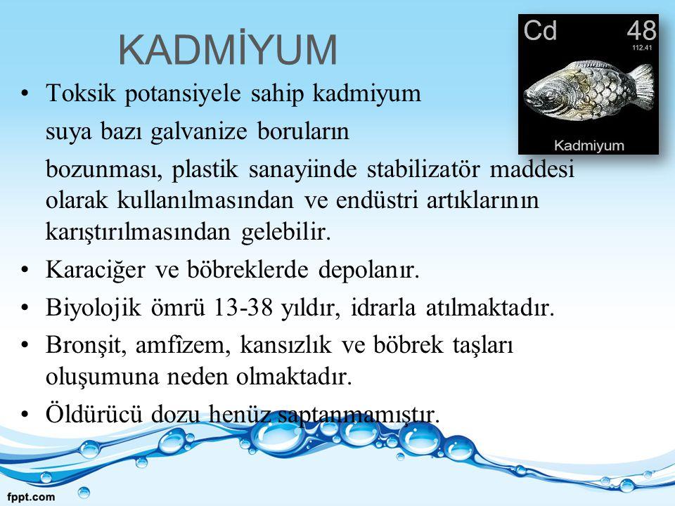 KADMİYUM Toksik potansiyele sahip kadmiyum suya bazı galvanize boruların bozunması, plastik sanayiinde stabilizatör maddesi olarak kullanılmasından ve