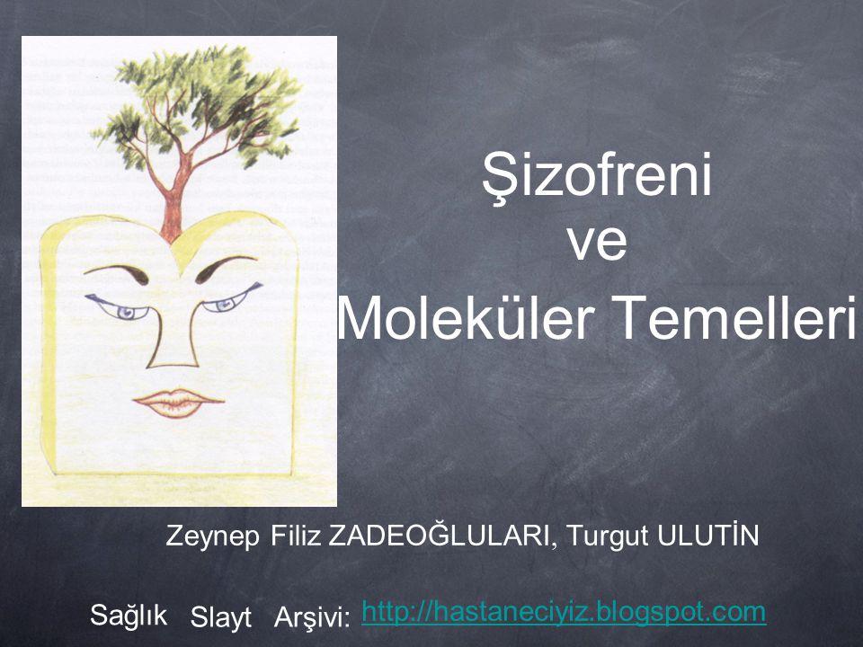Şizofreni ve Moleküler Temelleri Zeynep Filiz ZADEOĞLULARI, Turgut ULUTİN Sağlık SlaytArşivi: http://hastaneciyiz.blogspot.com